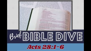 Brief Bible Dive: Maltese Hospitality - Acts 28:1-6