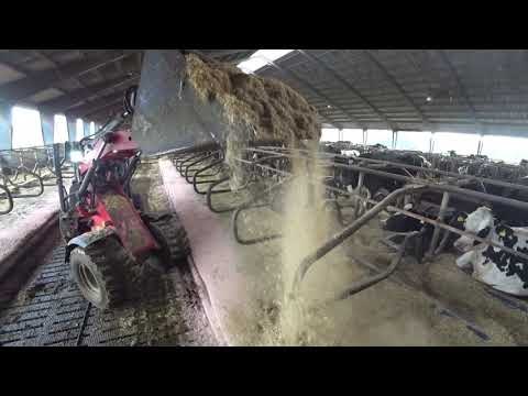 Intelligent Technology Modern Cow Milking Calf Feeder Hay Straw Silo Transportation Machine Fun LOL