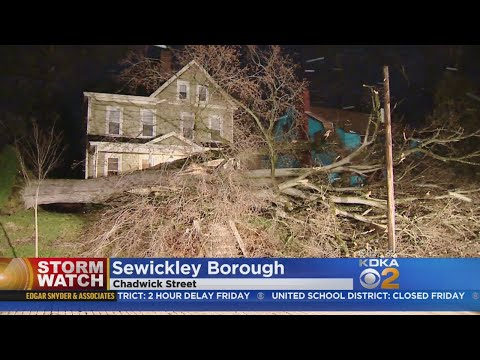 High Winds Batter Western Pa., Bringing Down Trees & Power Lines