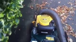Yard man Yard vac leaf clearing