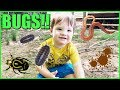 Kid Playing Outside In The Mud Making Mud Pies and Playing with Bugs