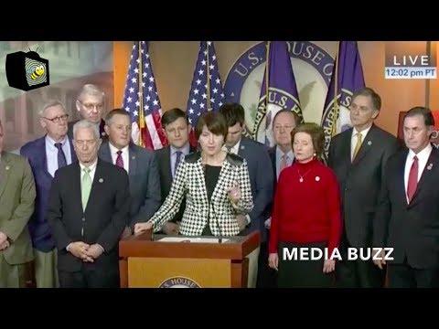 Republican Press Conference On Government Shutdown 1/20/18