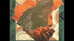 The Comsat Angels -  Land 1983 - complete album