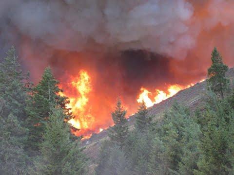 أخبار عالمية | المزيد من سكان كاليفورنيا يفرون منازلهم بسبب الحرائق  - نشر قبل 2 ساعة