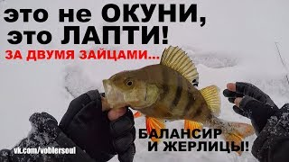 ОКУНИ-ЛАПТИ. Окунь на Балансир и Щука на Жерлицы. ЗА ДВУМЯ ЗАЙЦАМИ! Зимняя Рыбалка.