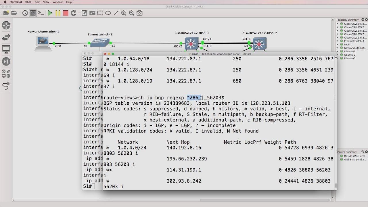 Python network automation, BGP and IOS regular expressions (Part 3)  Live  Internet BGP