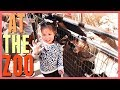 KIDS AT THE ZOO!