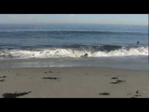 Relaxing 3 Hour Video of California Ocean Waves
