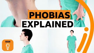 Where do phobias come from? | BBC Ideas