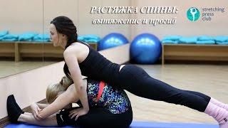 Парный стретчинг . Растяжка спины - прогиб и вытяжение - Stretching Press Club(Данный видео урок отлично подойдет для людей, которые любят заниматься спортом в паре. Начинать растяжку..., 2016-11-16T10:47:58.000Z)