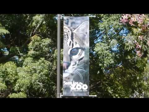 Santa Ana Zoo (outside)