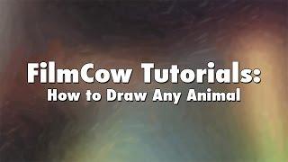 FilmCow Tutorials: How to Draw Any Animal