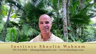 Qigong del Cosmos | El Arte de la Flexibilidad | Gran Maestro Wong Kiew Kit