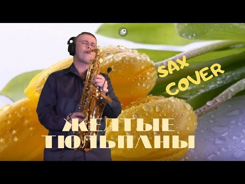 Наташа Королёва - Жёлтые тюльпаны | SAXOPHONE COVER By Amigoiga