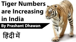 Tiger Population Increasing in India - All India Tiger Estimation Report 2018
