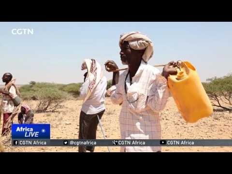 IGAD appeals for help to deal with Somalia's crippling famine