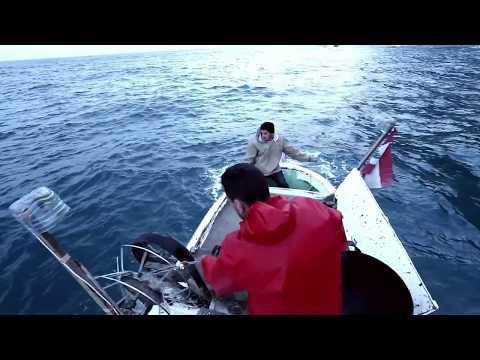 Rabih's Fishing Business