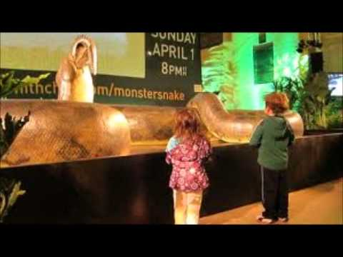 Titanoboa Tribute Travel Video