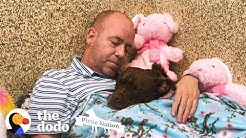 Guy Moves Into Animal Shelter Because He Loves This Pittie So Much   The Dodo Pittie Nation