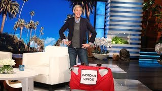Ellen Presents New Emotional Support Luggage