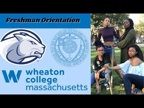 College Move in Day Vlog !!! 2017  - Wheaton College MA