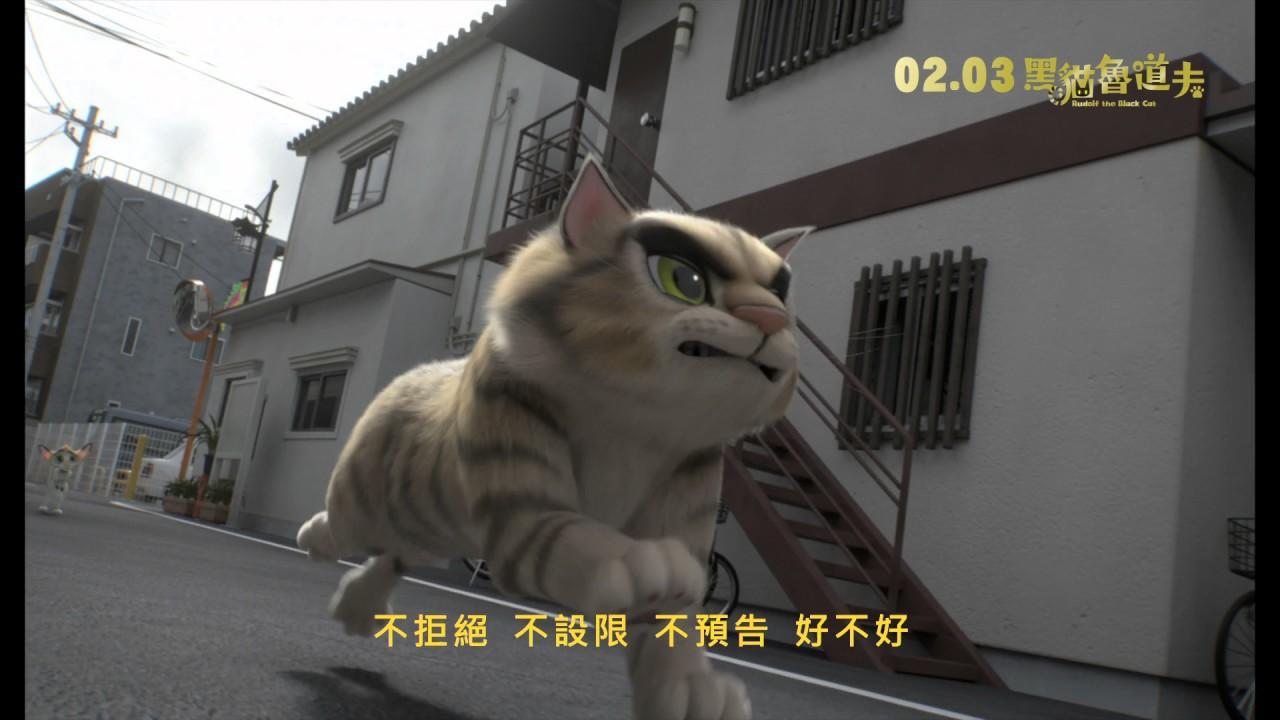 黑貓魯道夫 中文宣傳曲 潘裕文《不挑》│ 02.03 街貓當家 - YouTube