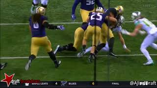 Vita Vea (Washington DT) vs Oregon - 2017