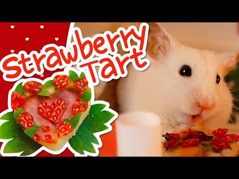 💘 Valentine's Strawberry Heart Tart   HAMSTER KITCHEN 💘