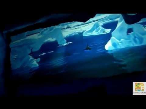 Antarctica - Empire of the Penguin at SeaWorld Orlando