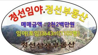 정선부동산 장뇌삼이 식재된 임야(토임) 3643㎡(11…
