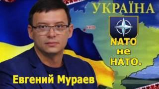 Евгений Мураев. НАТО не НАТО. Россия никогда не позволит расширения НАТО.