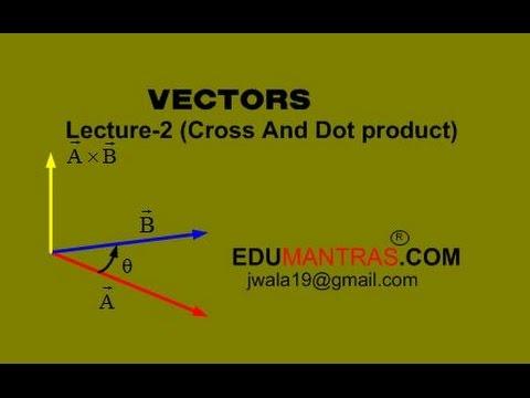 Vector - 2