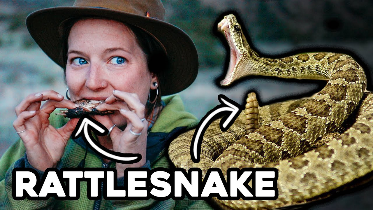 EATING a RATTLESNAKE from the BACKYARD || OFF GRID Tiny Living