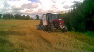 Rolnictwo na Warmii i Mazurach
