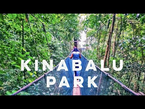 Amazing Borneo's Mount Kinabalu National Park & Poring Hot S
