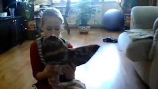как сделать хвост русалки(Это видео создано с помощью видеоредактора YouTube (http://www.youtube.com/editor), 2014-03-28T05:56:57.000Z)