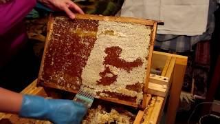 Как должен выглядеть зрелый качественный мёд.Домашний мёд.