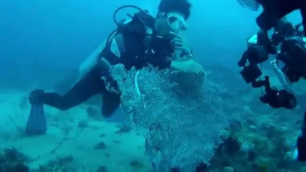 Diving at sekotong west lombok 2014 youtube - Lombok dive resort ...