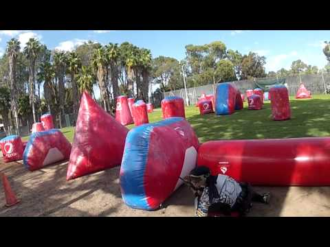 wasp paint ball Perth TK 5 2012-9-9,Sun
