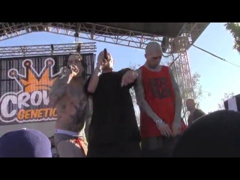 KOTTONMOUTH KINGS Live @ High Times SoCal Medical Cannabis Cup 2/6/2016