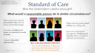 Tort of Negligence: Standard of Care