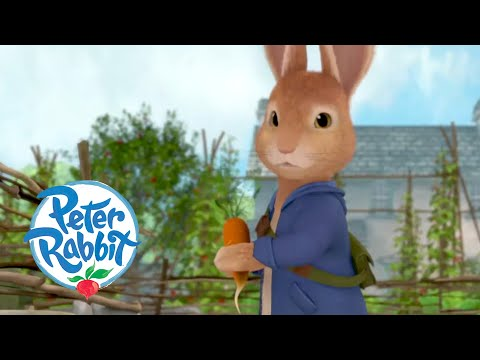 Peter Rabbit - Running From Trouble | What a Day