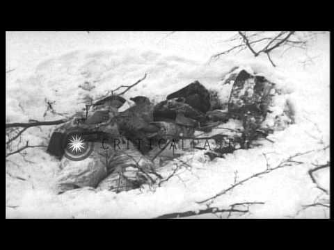 Dead German soldiers half buried in snow in Ambleve, Belgium during World War II. HD Stock Footage