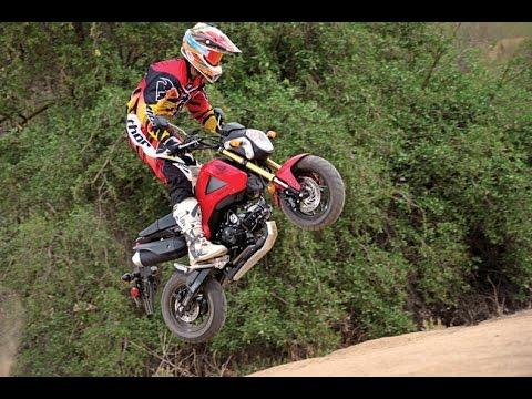 roading  honda groms  dirt bikes trail riding youtube
