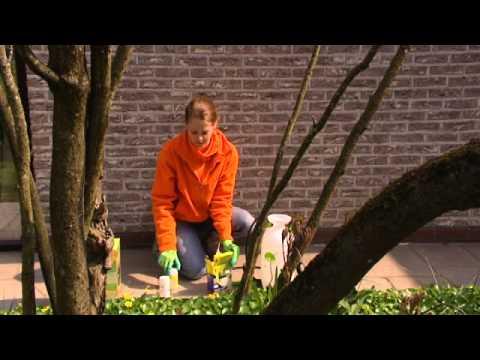 floralux astuce de jardin se d barrasser des mauvaises herbes youtube. Black Bedroom Furniture Sets. Home Design Ideas