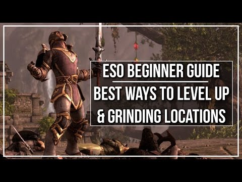 ESO Beginner Guide - Best Ways to Level Up