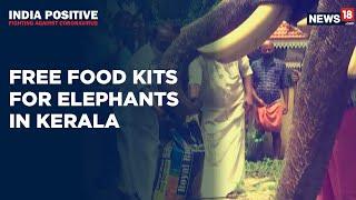 Kerala Govt Provides Free Food Kits To Captive Elephants   India Positive   CNN News18