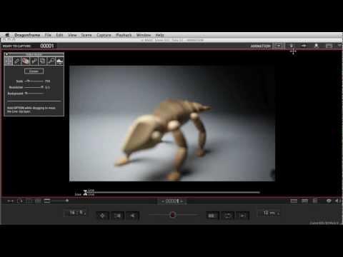 Dragonframe stop motion