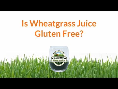 Is Wheatgrass Juice Gluten Free