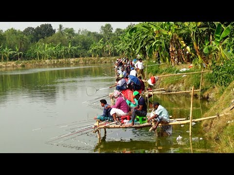 Fishing Competition in Village | Festival Fishing Video By Daily Village Life (Part-05)